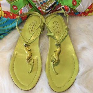 Rare Coach Seahorse Ankle Strap Sandals NWOB